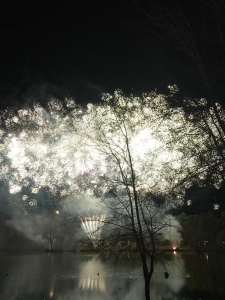An explosion of tiny white sprinkle fireworks fills the sky