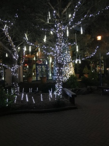 The centre of Center Parcs village lit up at night.