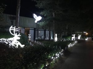 Wildlife installation made of lights. An owl flying in the sky and a family of deer on the grass to the left.