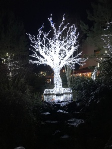 Sculpture of a bare tree, lights sparkling at night