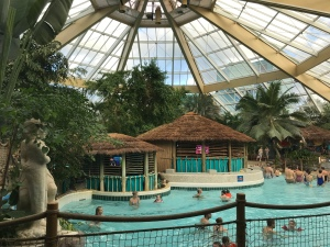 Looking out into the subtropical swimming pool. There is a glass roof. It is very bright and spacious.