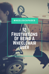 This is an image to pin. On the left and facing sideways is me in my wheelchair. There is a cat on the floor behind me. The title text, 12 frustrations of being a wheelchair user is placed over.