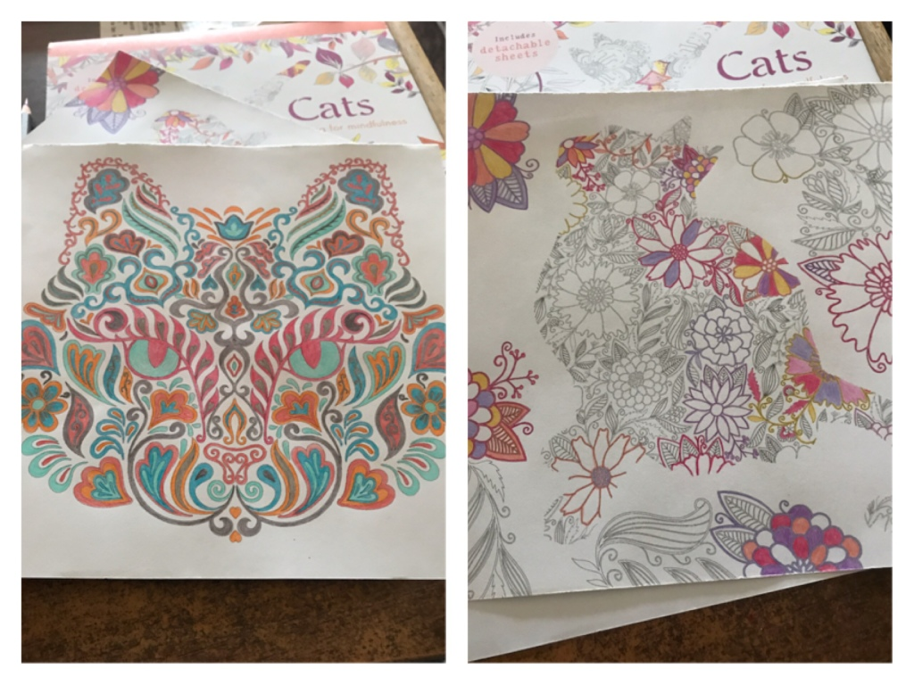 Two images of colouring cat pictures. They are intricate and detailed. The left image is a finished colouring of a cats face constructed from floral and swirly shapes. The right image is of a cat constructed from floral patterns. It is partly coloured.