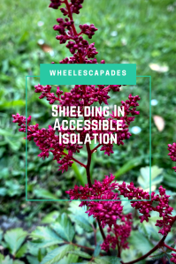 An image to pin. Title text Shielding In Accessible Isolation, is place over a photo of deep red flowers in my garden.