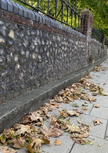 An old stone wall at an angle to the left, and a pavement following it is scattered with dry crusty leaves in oranges and browns.