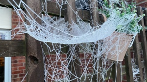 A large spider web that's made up of multiple layers. Looks almost like a nest.