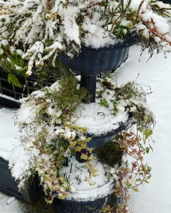 A three tired planter in the garden. There are a few twigs and leaves poking through the snow.