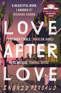 Book cover for Love After Love. A stylized image or a beach and raised cabin in warm pinks and greens cover the page. The title text is very large in white and is placed over the image.